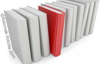 Ein hohes Tempo macht einen Roman zum Pageturner.